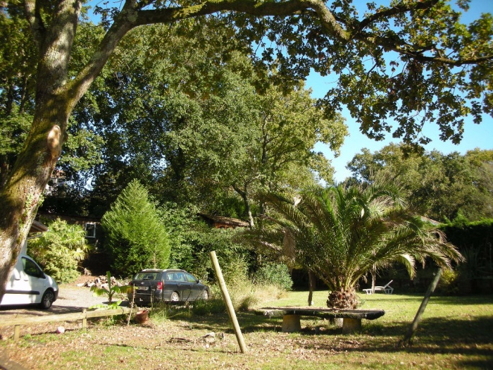Good House In Saint Martin De Seignanx 4 Rooms 130 Sqm + Dependency + Building  Land ...